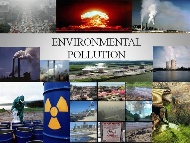 150 words essay on pollution free