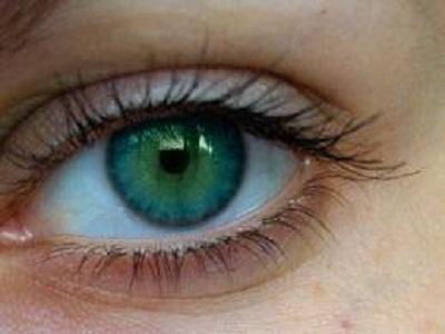 Idioms - Body - Eye