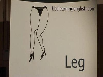 Idioms - Body - Leg