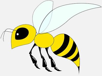 Idioms - Animals - Bee