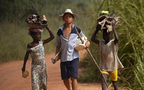New Attention Given to Child Cocoa Workers in Ivory Coast and Ghana