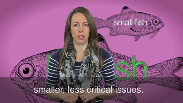 Bigger Fish to Fry - Việc quan trọng hơn, việc cần ưu tiên hoàn thành trước