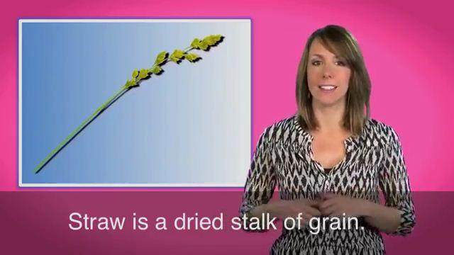 The Last Straw - Giọt nước tràn ly