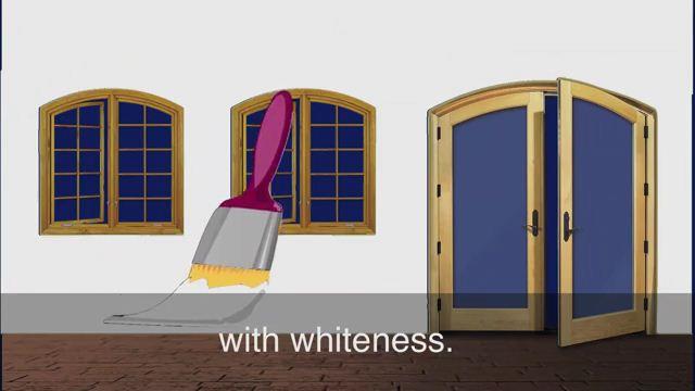 Whitewash - Che giấu, che đậy