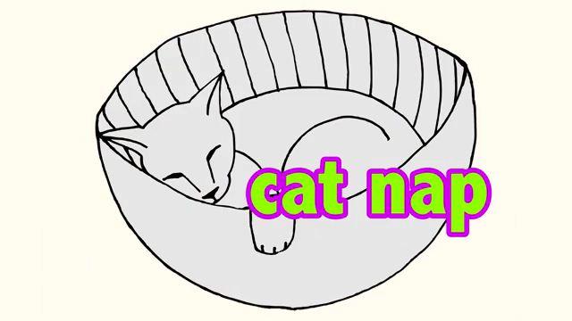 Cat Nap - Chợp mắt