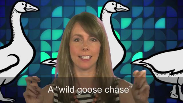 Wild Goose Chase - Tìm kiếm trong vô vọng
