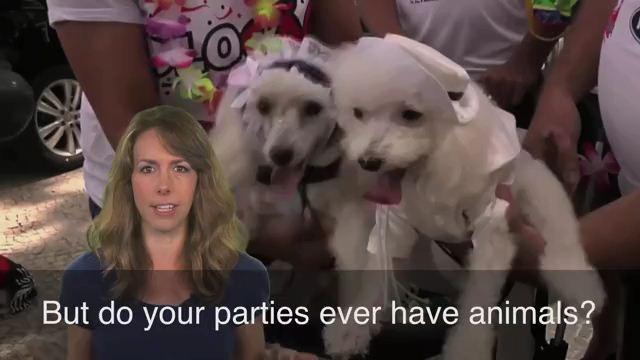 Party Animal - Người thích tiệc tùng