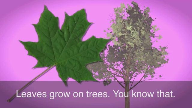 Turn Over a New Leaf - Bước sang một trang mới