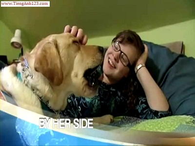 Lesson 44: Dog saves owner from fainting