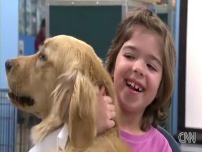 Lesson 49: preventing dog bites