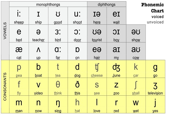 2. Bắt đầu cách đọc tiếng anh chuẩn bằng cách học bảng phiên âm