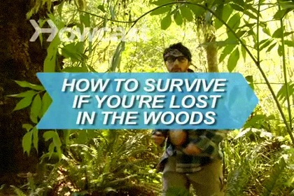 How to Survive If You're Lost in the Woods