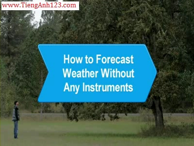 How to Forecast Weather without Any Instrument